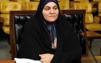 سعیدی، عضو کمیسیون آموزش: تا وقتی  آموزشوپروش دغدغه بودجه دارد، آموزش و تربیت خوبی نخواهیم داشت
