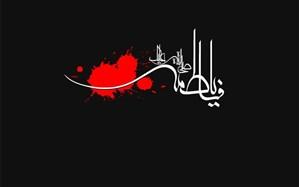 برنامه های شبکه دو سیما به مناسبت شهادت حضرت فاطمه زهرا (س)