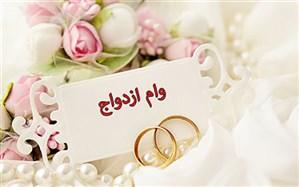 معاون بانک مرکزی: ۱۸۳ هزار نفر وام ۱۵ میلیون تومانی ازدواج گرفتهاند