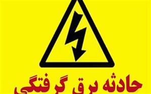 برق گرفتگی به زندگی برقکار تبریزی  پایان داد