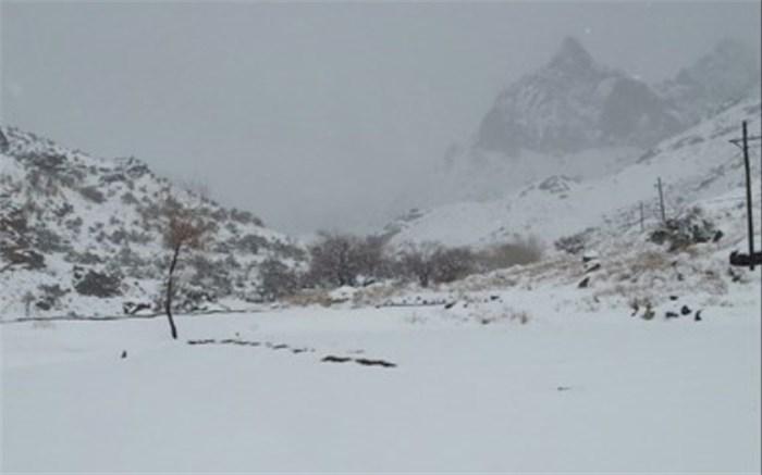 برف و کولاک در تفتان