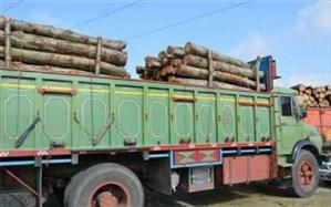 کشف بیش از 5 تن چوب آلات قاچاق جنگلی در اردبیل