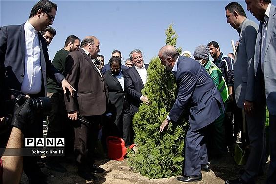 آیین کاشت درخت ایثار
