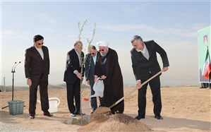 رئیس جمهور: همه مردم در طرح درختکاری مشارکت کنند