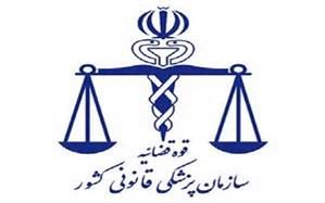 خانوادههای قربانیان سقوط هواپیما به پزشکی قانونی استان محل سکونت خود مراجعه کنند