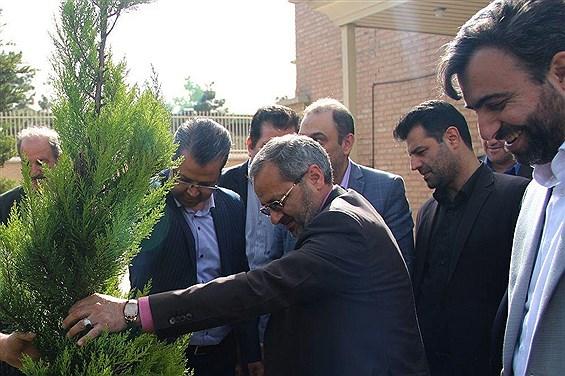 کاشت یک اصله نهال توسط معاون پرورشی و فرهنگی وزارت آموزش و پرورش