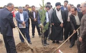 برگزاری مراسم روز درختکاری  در ملارد