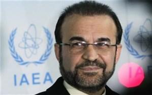 نجفی: انعقاد موافقت نامه پادمان هسته ای با آژانس نقطه عطفی درجامعه بین الملل و خاورمیانه است