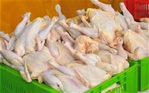 استان اردبیل ۸ درصد گوشت مرغی کشور را تولید میکند