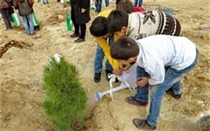 مراسم درختکاری در شهرستان خوسف
