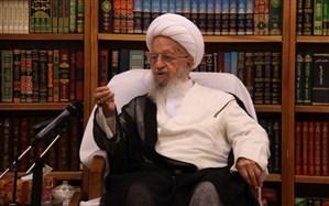 آیتالله مکارم شیرازی: جانشین مناسبی برای شبکههای اجتماعی آلوده تهیه شود/ عزم جدی نمیبینم