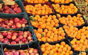 توزیع ۱۰۰۰ تن سیب و پرتقال با قیمت دولتی در مازندران آغاز شد