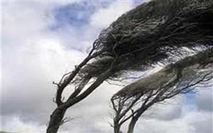 پیش بینی وزش باد تند در استان اردبیل