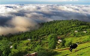 کلاردشت و عباسآباد؛ شهر چشمهها و جنگلها