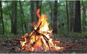 گردشگران مراقب باشند؛ زندان در انتطار عاملان آتشسوزی در جنگلها