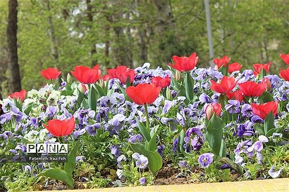 پارک لاله تهران در بهار طبیعت