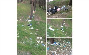 تصویر/ پارک جنگلی لویزان در تصرف زبالهها !