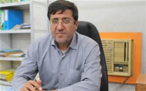 سومین دوره مسابقات گلایدر در استان بوشهر برگزار می گردد