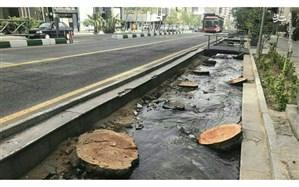 ساماندهی خیابان ولیعصر(عج) پایتخت تا خرداد ۱۴۰۰ برای ثبت جهانی