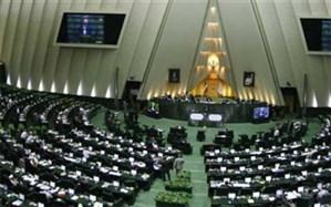 آغاز جلسه غیرعلنی مجلس با حضور حجتی: طرح اقتصاد ملی غیرعلنی بررسی میشود