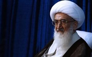 آیتالله نوری همدانی: هدف دشمن از حمله به سوریه شکستن مقاومت است