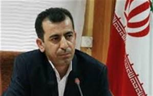 مدیرکل ورزش و جوانان کردستان : عملکرد حوزه جوانان استان کردستان در سال 96 قابل قبول بوده است