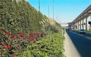 پیشرفت 80درصدی احداث دیواره سبز در بلوار زائر