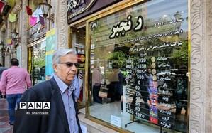 مدیر کل سیاستها و مقررات ارزی بانک مرکزی اعلام کرد: توزیع ارز مسافرتی فعلا ادامه دارد