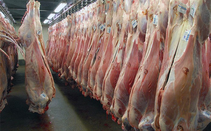 کاهش تقاضا و افت قیمت گوشت گوسفندی