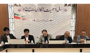 نخستین جلسه ستاد گیاهان دارویی استان در استانداری برگزار شد