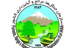 عملکرد سازمان جنگلها زیر ذرهبین مجلس