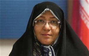 صدراعظم نوری، عضو شورای شهر تهران تاکید کرد: ضرورت  اصلاح قانون شوراهای شهر