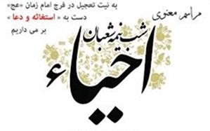اولین آیین دانشآموزی احیای مهدویت در مازندران برگزار میشود