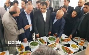 پروژه مرکز تهیه غذای بیمار در شهر گرمدره با حضور وزیربهداشت و استاندار افتتاح شد