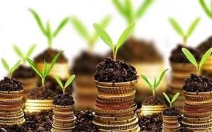 بهبود فرآیند جذب سرمایهگذاری خارجی در دولت آتی مورد توجه قرار گیرد