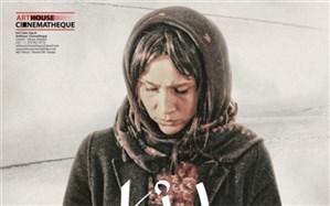 پوستر بین المللى «کژال» رونمایى شد + تصویر