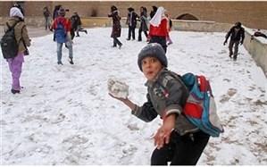 تردید معاون ابتدایی آموزش و پرورش درباره  اجرای شدن تعطیلی زمستانی مدارس در سال جدید تحصیلی