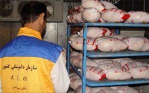 راهاندازی 36 اکیپ ثابت و سیار دامپزشکی در سیستان و بلوچستان