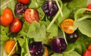 مهلت سازمان غذا و دارو به شرکتها برای برچسبگذاری محصولات تراریخته