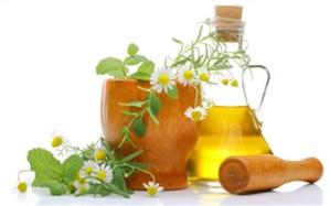 چهارمین جشنواره گیاهان دارویی، فرآوردههای طبیعی و طب ایرانی برگزار میشود
