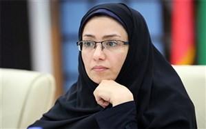 فاطمه دهقانی سرپرست دفتر روستایی و شوراهای استانداری بوشهر شد