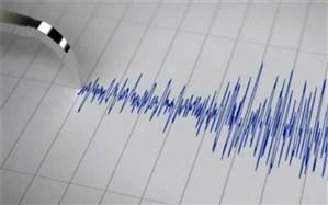زمین لرزه سرجنگل شهرستان زاهدان خسارتی نداشته است