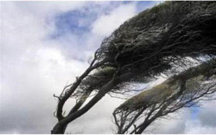 تند باد استان البرز را درنوردید