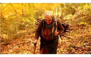 قصه زندگی دشوار اما دلخواه یک مادر 80 ساله فیلم مستند شد
