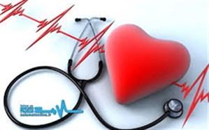 اجرای ۳۵ پروژه بهداشتی و درمانی تو سط خیرین سلامت در خراسان جنوبی