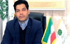 سهم 22 درصدی کارکنان دولت از در آمد مالیاتی استان