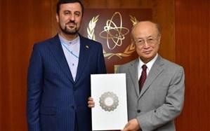 دیدار نماینده جدید ایران در آژانس با آمانو + تصویر