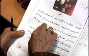رئیس سازمان نهضت سواد آموزی: آییننامه اجرایی استخدام آموزشدهندگان در حال تدوین است