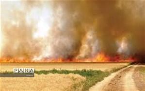 بهره برداری ازدستگاههای کشت مستقیم  جایگزین آتش زدن مزارع میشود