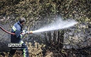 آتش سوزی ارتفاعات فیروزآباد پس از گذشت 3روز مهار شد